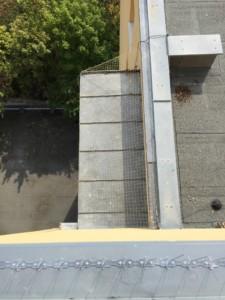 Instalace sítě a hrotů proti holubům na bytovém domě